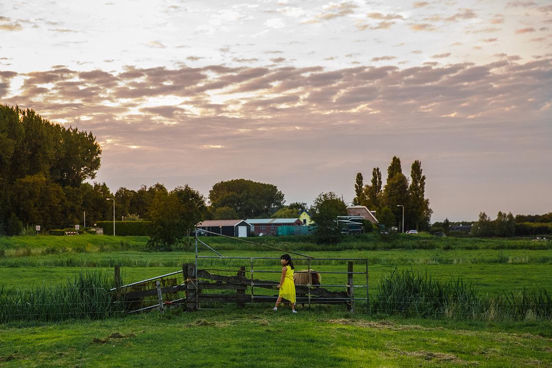 boerderij stammerdijk